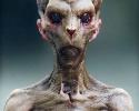 damien_canderle_aliencat_01