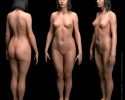 damien_canderle_woman_anatomical_study_03