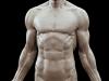 damien_canderle_anatomical_study_04